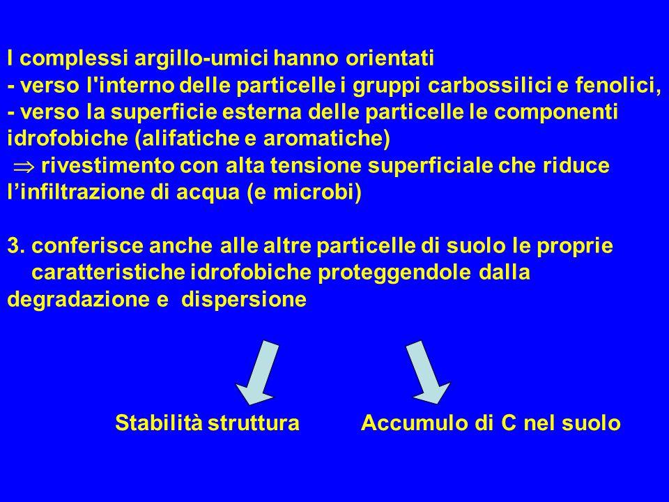 I complessi argillo-umici hanno orientati - verso l'interno delle particelle i gruppi carbossilici e fenolici, - verso la superficie esterna delle par