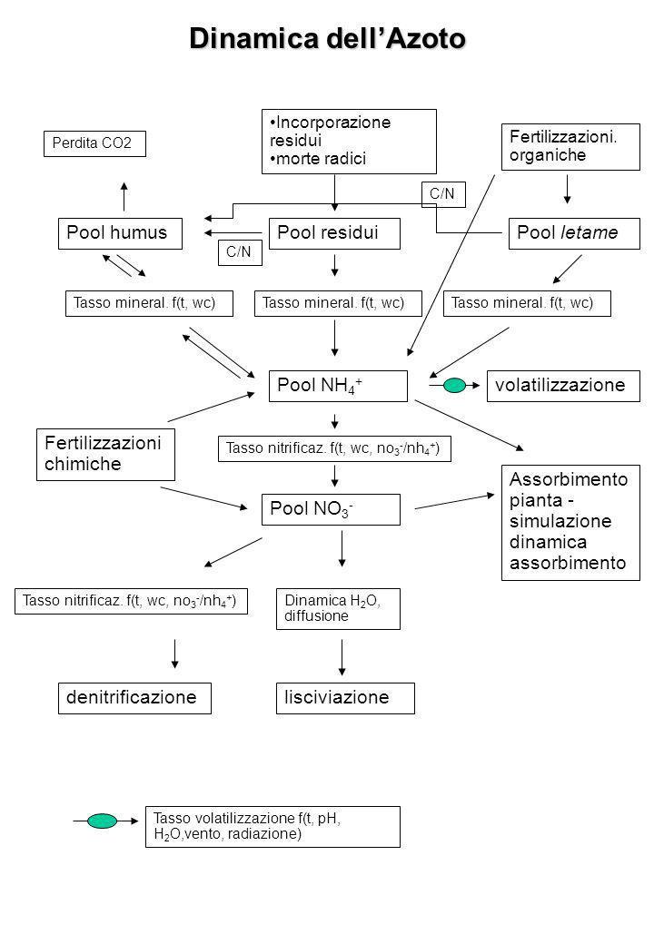 Dinamica dellAzoto Pool humusPool residui Tasso mineral.