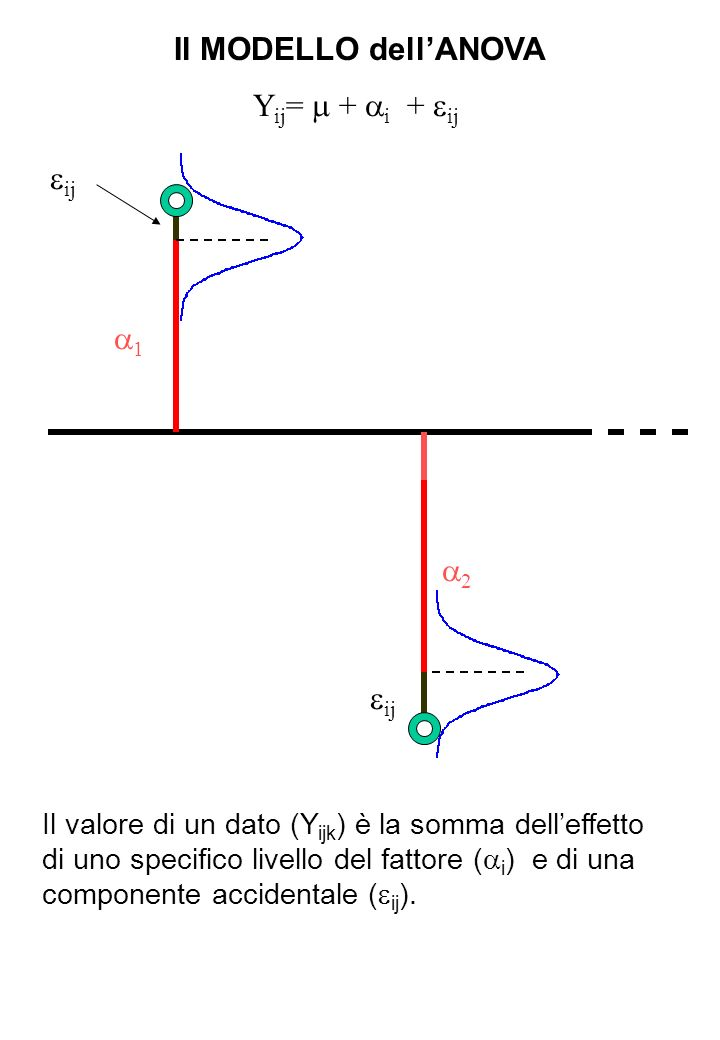 Il MODELLO dellANOVA Y ij = + i + ij 1 2 ij Il valore di un dato (Y ijk ) è la somma delleffetto di uno specifico livello del fattore ( i ) e di una c