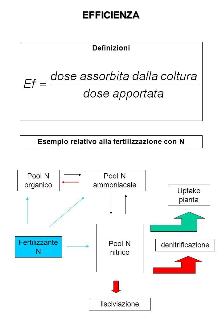 EFFICIENZA Definizioni Esempio relativo alla fertilizzazione con N Pool N nitrico Pool N organico Pool N ammoniacale Uptake pianta denitrificazione lisciviazione Fertilizzante N