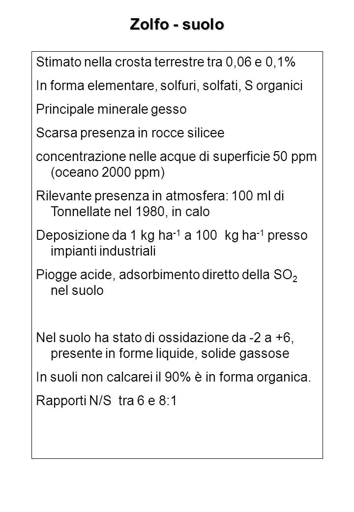 Zolfo - suolo Stimato nella crosta terrestre tra 0,06 e 0,1% In forma elementare, solfuri, solfati, S organici Principale minerale gesso Scarsa presen