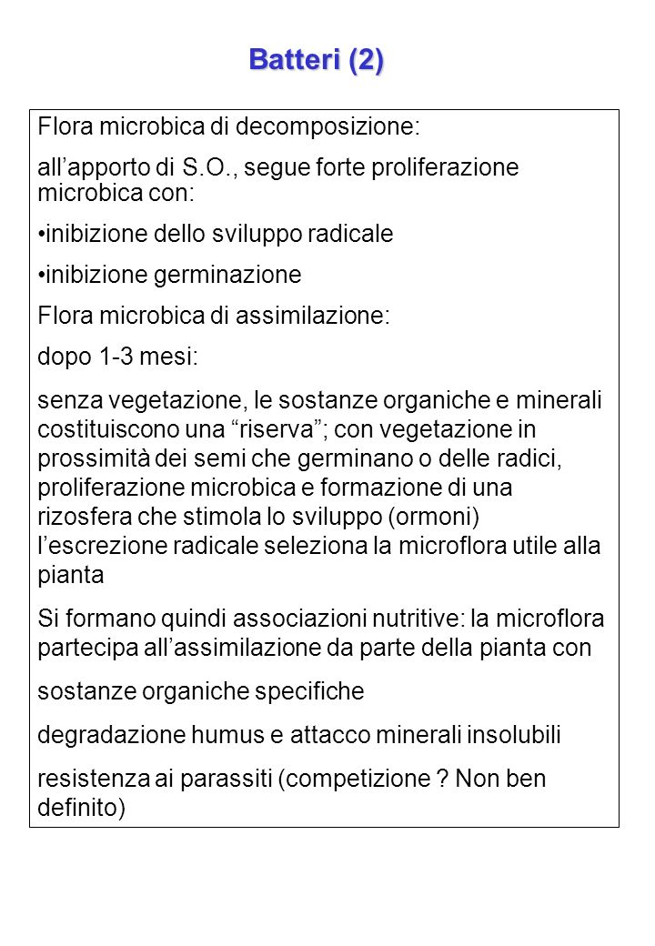 Batteri (2) Flora microbica di decomposizione: allapporto di S.O., segue forte proliferazione microbica con: inibizione dello sviluppo radicale inibiz