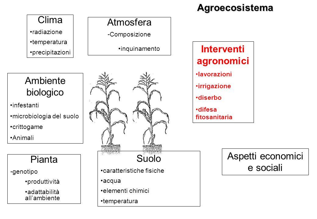 Agroecosistema Clima radiazione temperatura precipitazioni Pianta -genotipo produttività adattabilità allambiente Suolo caratteristiche fisiche acqua