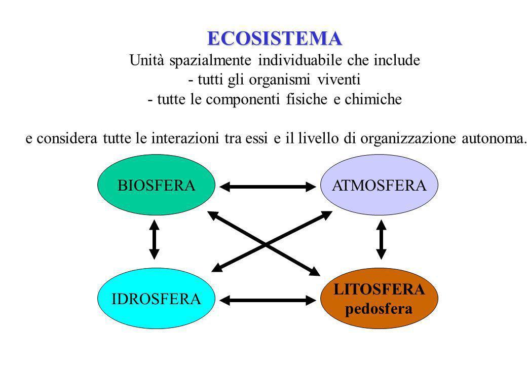 ECOSISTEMA Unità spazialmente individuabile che include - tutti gli organismi viventi - tutte le componenti fisiche e chimiche e considera tutte le interazioni tra essi e il livello di organizzazione autonoma.
