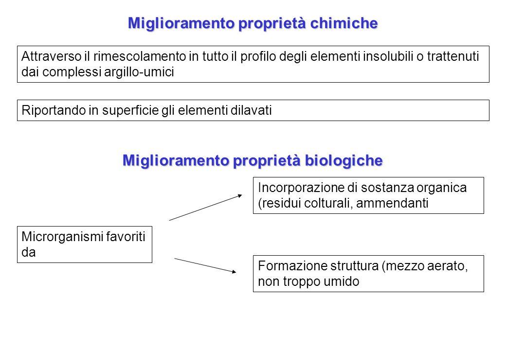 Miglioramento proprietà chimiche Attraverso il rimescolamento in tutto il profilo degli elementi insolubili o trattenuti dai complessi argillo-umici R