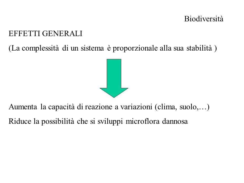 Biodiversità EFFETTI SPECIFICI Vegetazione Vegetazione (rotazioni, consociazioni, siepi, frangivento,…..) -Biodiversità microflora (essudati radicali, residui colturali,….) -Biodiversità artropodofauna -Assorbimento di macro e micronutrienti più equilibrato (in qualità e nella distribuzione nel profilo del suolo) -Struttura del suolo (apparati radicali diversi per profondità e tipologia) -Riduzione infestanti (operazioni colturali in epoche differenti) -Riduzione dei rischi (climatici e di mercato)