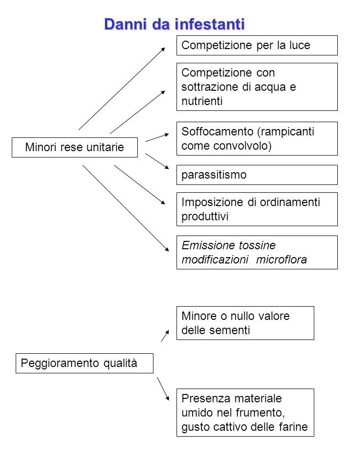 Danni da infestanti Minori rese unitarie Competizione per la luce Emissione tossine modificazioni microflora Competizione con sottrazione di acqua e n