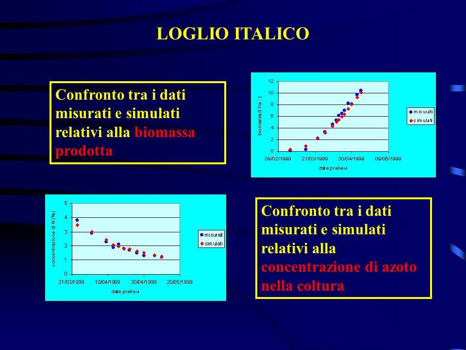 LOGLIO ITALICO Confronto tra i dati misurati e simulati relativi alla biomassa prodotta Confronto tra i dati misurati e simulati relativi alla concent