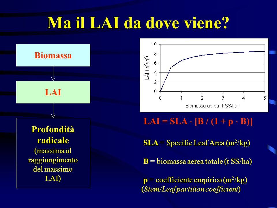 Ma il LAI da dove viene? Biomassa LAI Profondità radicale (massima al raggiungimento del massimo LAI) LAI = SLA [B / (1 + p B)] SLA = Specific Leaf Ar