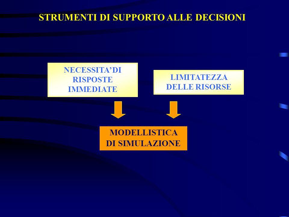 STRUMENTI DI SUPPORTO ALLE DECISIONI NECESSITA DI RISPOSTE IMMEDIATE LIMITATEZZA DELLE RISORSE MODELLISTICA DI SIMULAZIONE