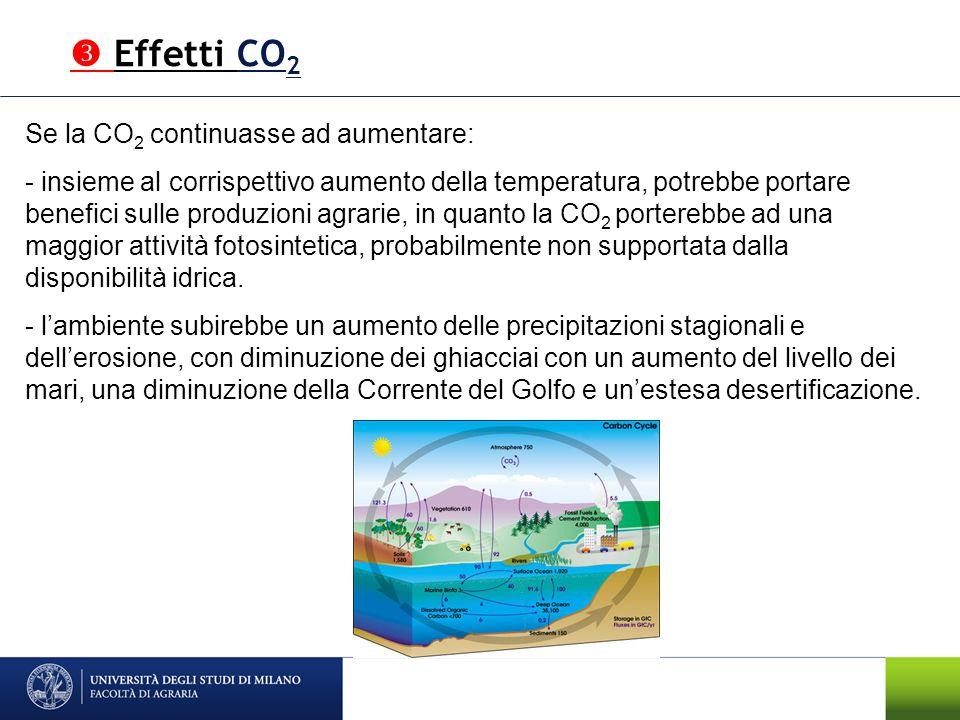 Se la CO 2 continuasse ad aumentare: - insieme al corrispettivo aumento della temperatura, potrebbe portare benefici sulle produzioni agrarie, in quan
