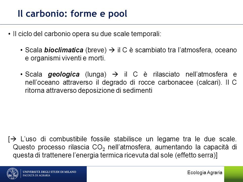 Il carbonio: forme e pool Il ciclo del carbonio opera su due scale temporali: Scala bioclimatica (breve) il C è scambiato tra latmosfera, oceano e org