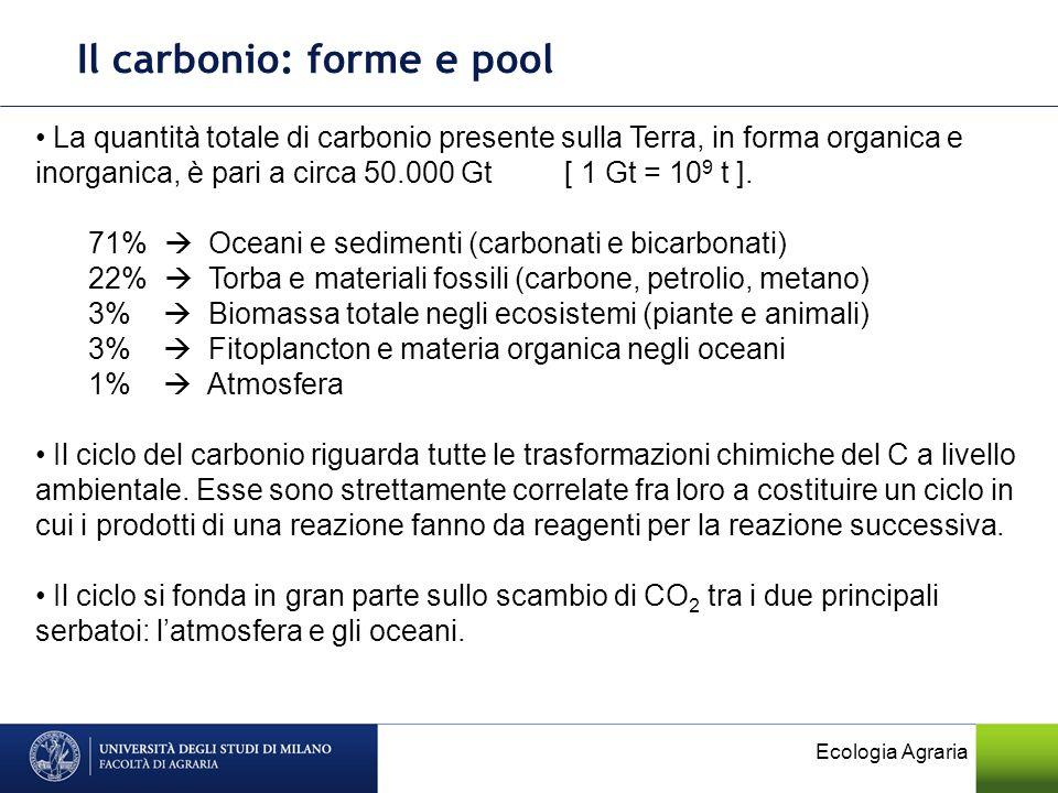 Il carbonio: forme e pool La quantità totale di carbonio presente sulla Terra, in forma organica e inorganica, è pari a circa 50.000 Gt [ 1 Gt = 10 9