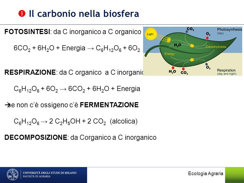 Ecologia Agraria FOTOSINTESI: da C inorganico a C organico 6CO 2 + 6H 2 O + Energia C 6 H 12 O 6 + 6O 2 RESPIRAZIONE: da C organico a C inorganico C 6