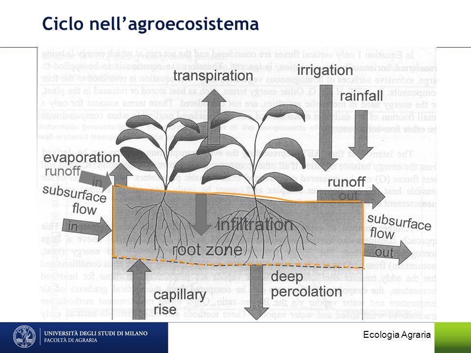 Ciclo nellagroecosistema Ecologia Agraria