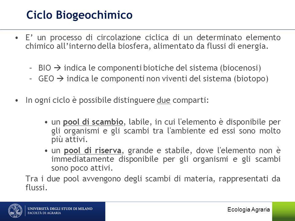 Ciclo Biogeochimico E un processo di circolazione ciclica di un determinato elemento chimico allinterno della biosfera, alimentato da flussi di energi