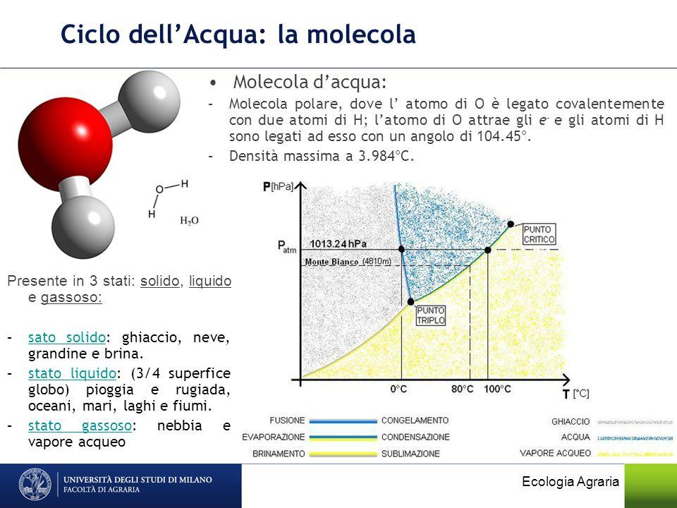 Ciclo dellAcqua: la molecola Ecologia Agraria Molecola dacqua: –Molecola polare, dove l atomo di O è legato covalentemente con due atomi di H; latomo