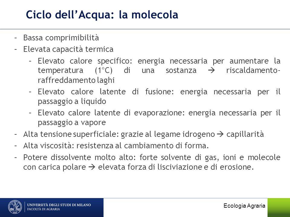 Ciclo dellAcqua: la molecola Ecologia Agraria –Bassa comprimibilità –Elevata capacità termica –Elevato calore specifico: energia necessaria per aument