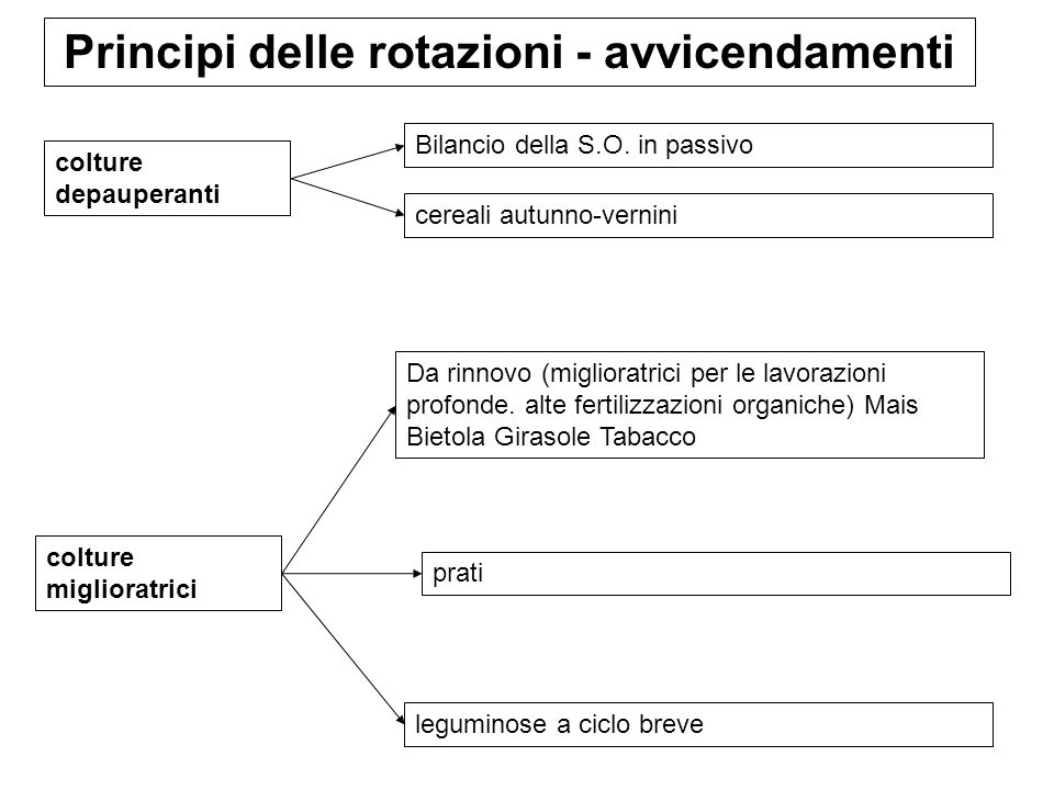 Principi delle rotazioni - avvicendamenti colture depauperanti Bilancio della S.O. in passivo cereali autunno-vernini colture miglioratrici Da rinnovo
