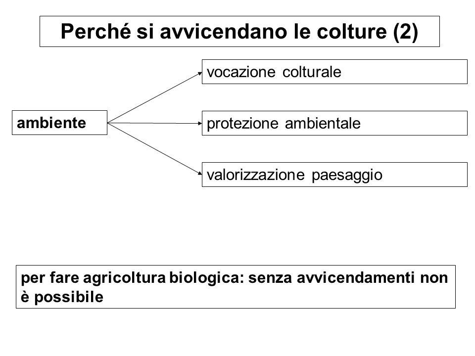 ambiente Perché si avvicendano le colture (2) vocazione colturale protezione ambientale per fare agricoltura biologica: senza avvicendamenti non è pos