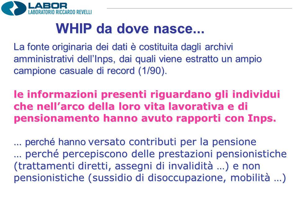 WHIP da dove nasce... La fonte originaria dei dati è costituita dagli archivi amministrativi dellInps, dai quali viene estratto un ampio campione casu