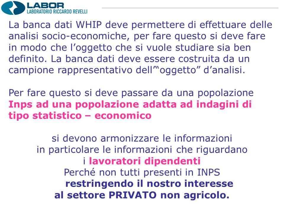 La banca dati WHIP deve permettere di effettuare delle analisi socio-economiche, per fare questo si deve fare in modo che loggetto che si vuole studia