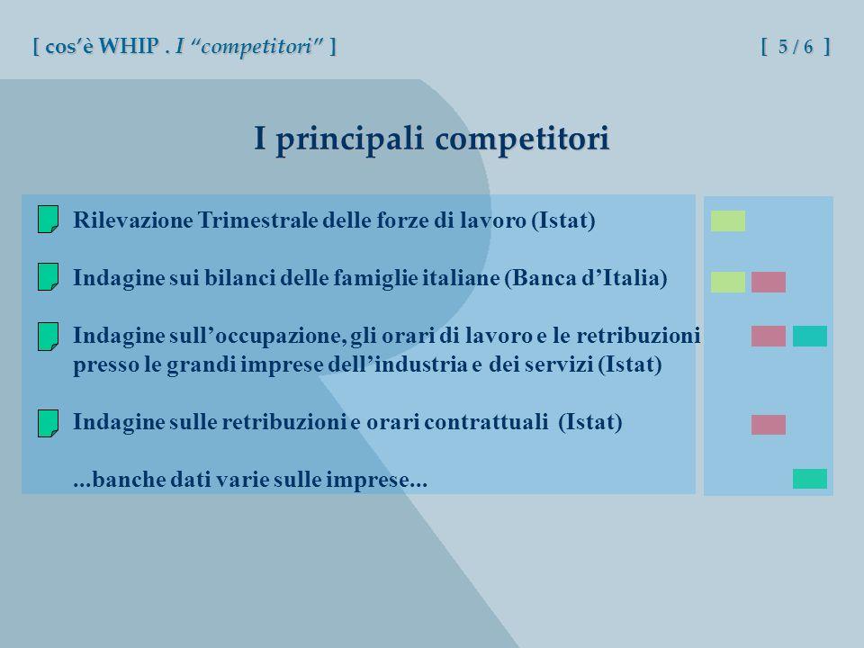 I principali competitori Rilevazione Trimestrale delle forze di lavoro (Istat) Indagine sui bilanci delle famiglie italiane (Banca dItalia) Indagine s