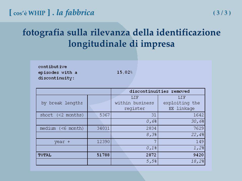 fotografia sulla rilevanza della identificazione longitudinale di impresa [ cosè WHIP ].