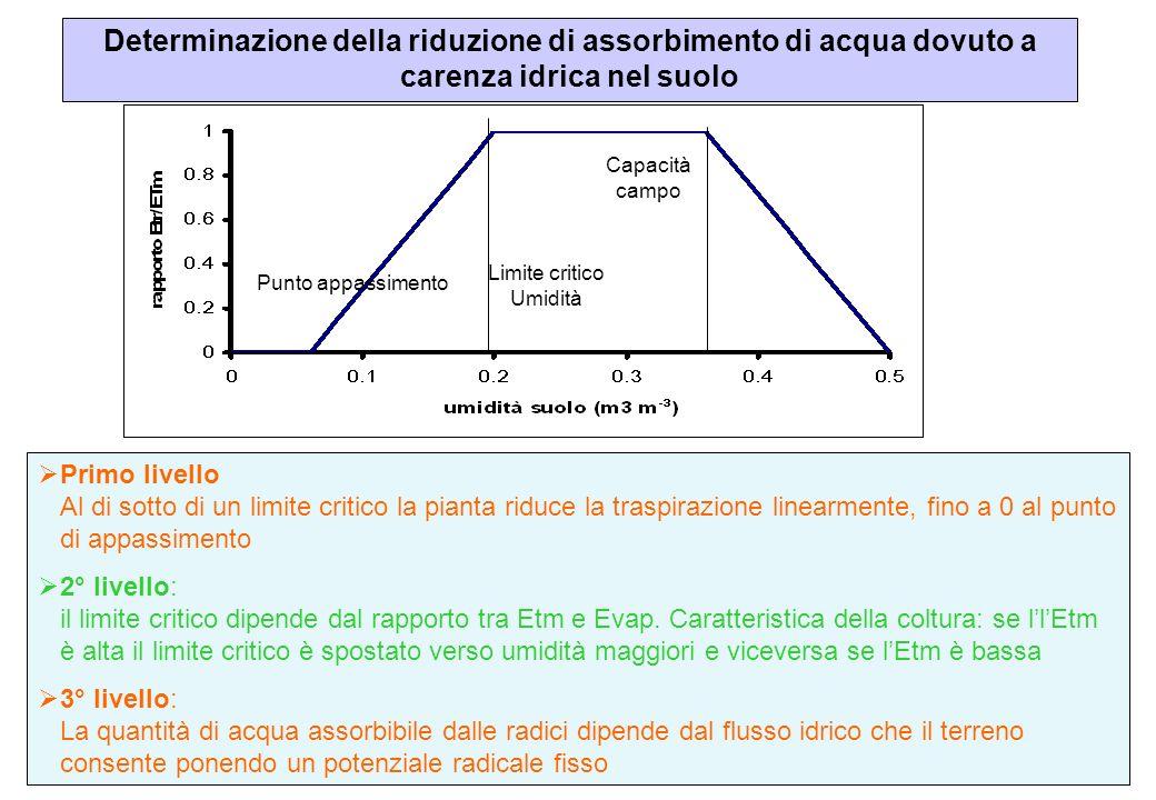Determinazione della riduzione di assorbimento di acqua dovuto a carenza idrica nel suolo Limite critico Umidità Capacità campo Punto appassimento Pri