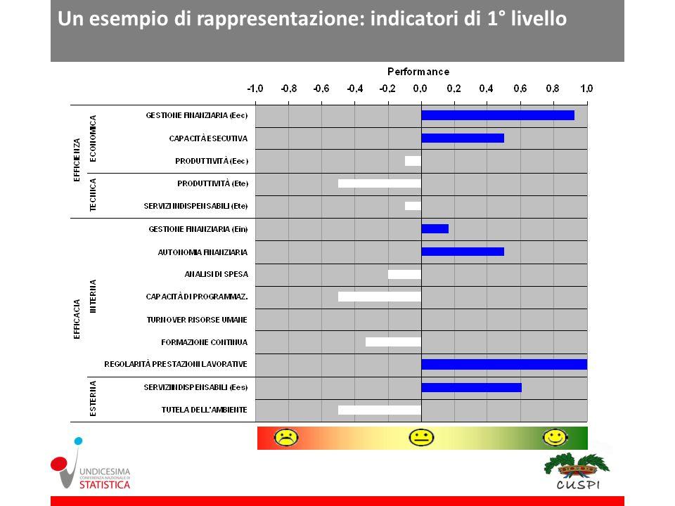 Un esempio di rappresentazione: indicatori di 1° livello