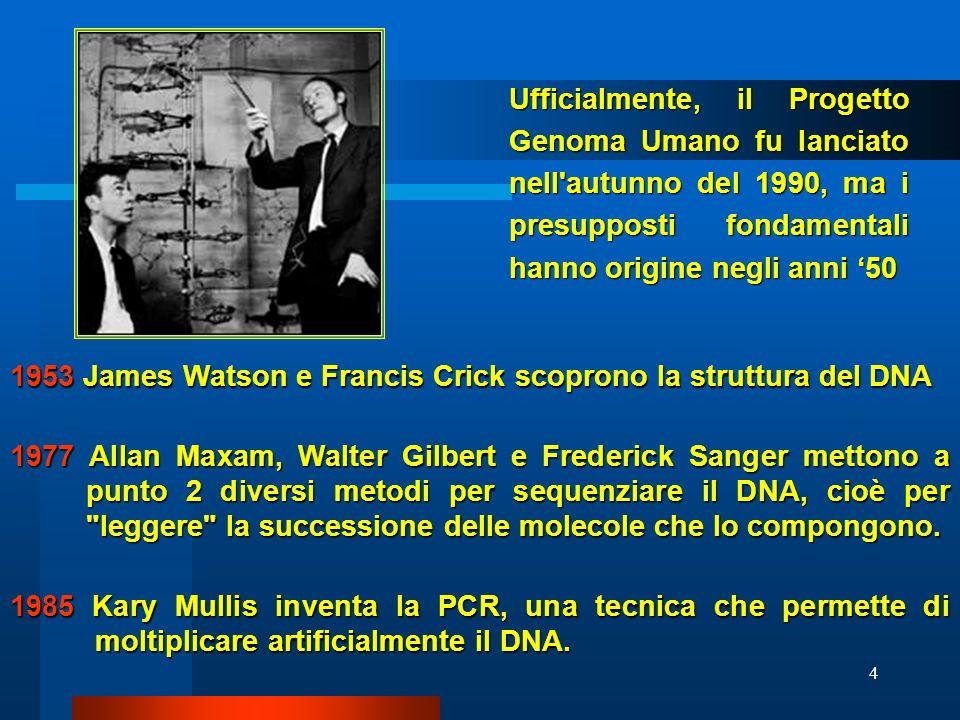 4 Ufficialmente, il Progetto Genoma Umano fu lanciato nell'autunno del 1990, ma i presupposti fondamentali hanno origine negli anni 50 1953 James Wats