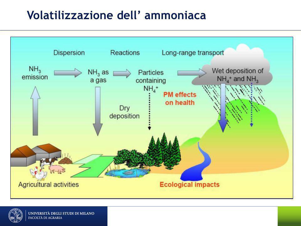 Volatilizzazione dell ammoniaca