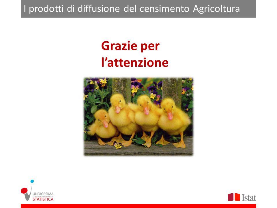 I prodotti di diffusione del censimento Agricoltura Grazie per lattenzione