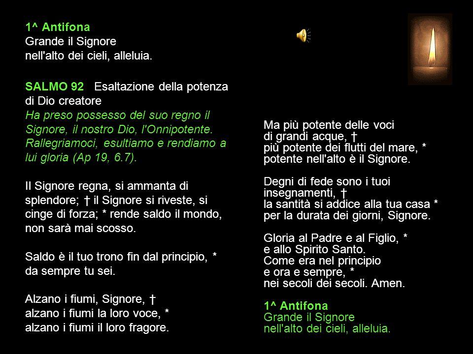 3 NOVEMBRE 2013 - XXXI DOMENICA DEL TEMPO ORDINARIO LODI V.