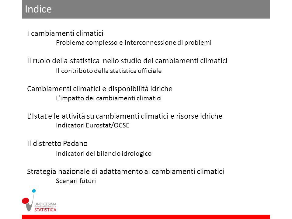 Indice I cambiamenti climatici Problema complesso e interconnessione di problemi Il ruolo della statistica nello studio dei cambiamenti climatici Il c