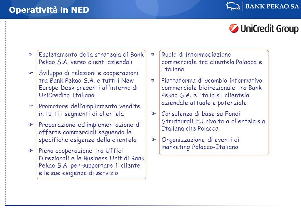 Operatività in NED Espletamento della strategia di Bank Pekao S.A. verso clienti aziendali Sviluppo di relazioni e cooperazioni tra Bank Pekao S.A. e