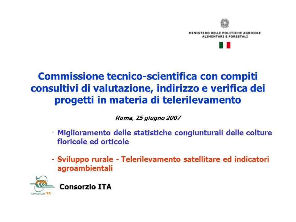 Commissione tecnico-scientifica con compiti consultivi di valutazione, indirizzo e verifica dei progetti in materia di telerilevamento Roma, 25 giugno