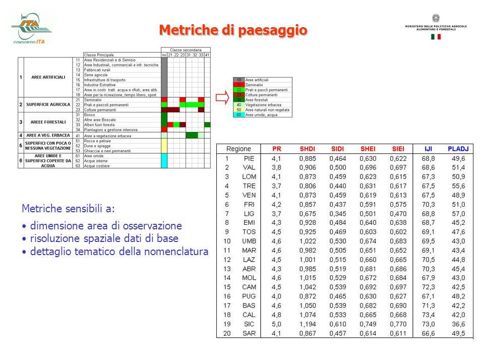 Metriche sensibili a: dimensione area di osservazione risoluzione spaziale dati di base dettaglio tematico della nomenclatura