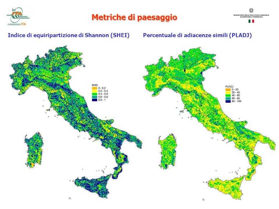 Metriche di paesaggio Indice di equiripartizione di Shannon (SHEI) Percentuale di adiacenze simili (PLADJ)