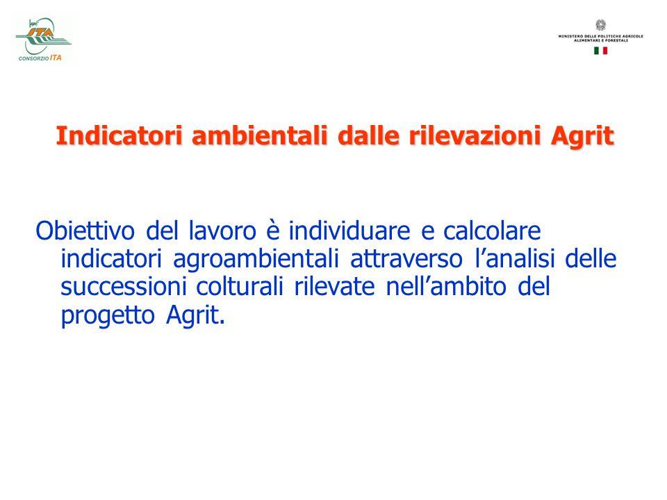 Indicatori ambientali dalle rilevazioni Agrit Obiettivo del lavoro è individuare e calcolare indicatori agroambientali attraverso lanalisi delle succe