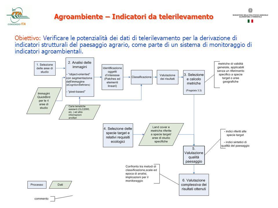 Agroambiente – Indicatori da telerilevamento Obiettivo: Verificare le potenzialità dei dati di telerilevamento per la derivazione di indicatori strutt