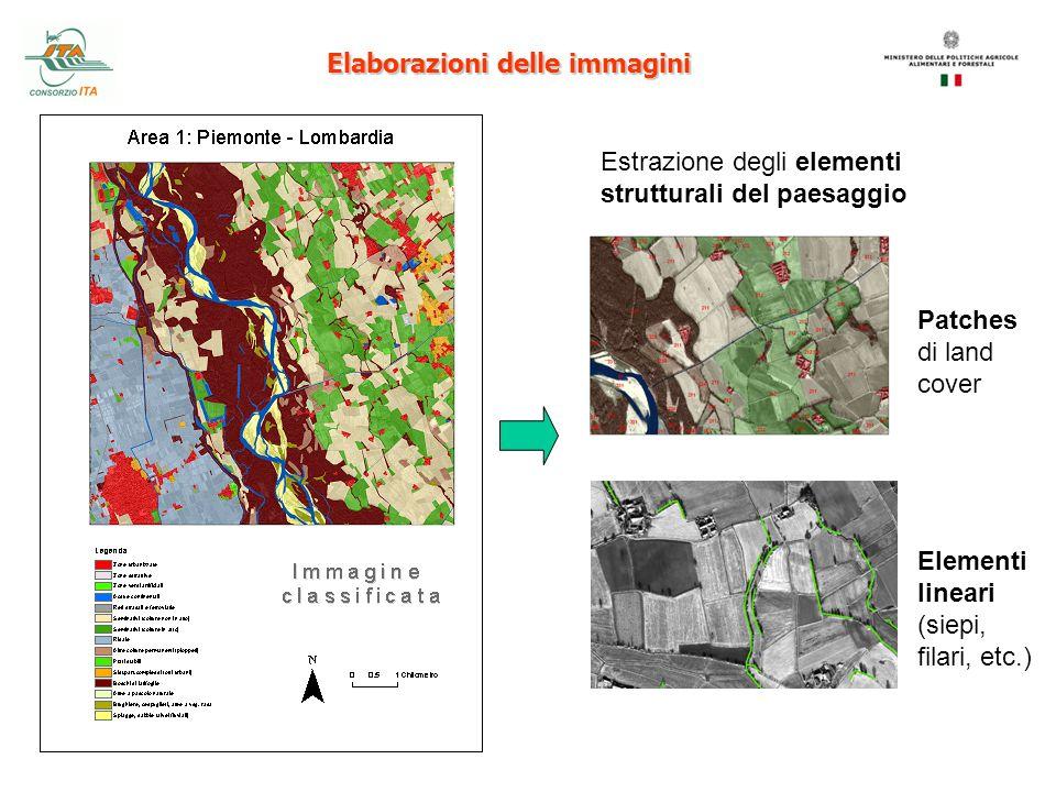 Elaborazioni delle immagini Estrazione degli elementi strutturali del paesaggio Patches di land cover Elementi lineari (siepi, filari, etc.)