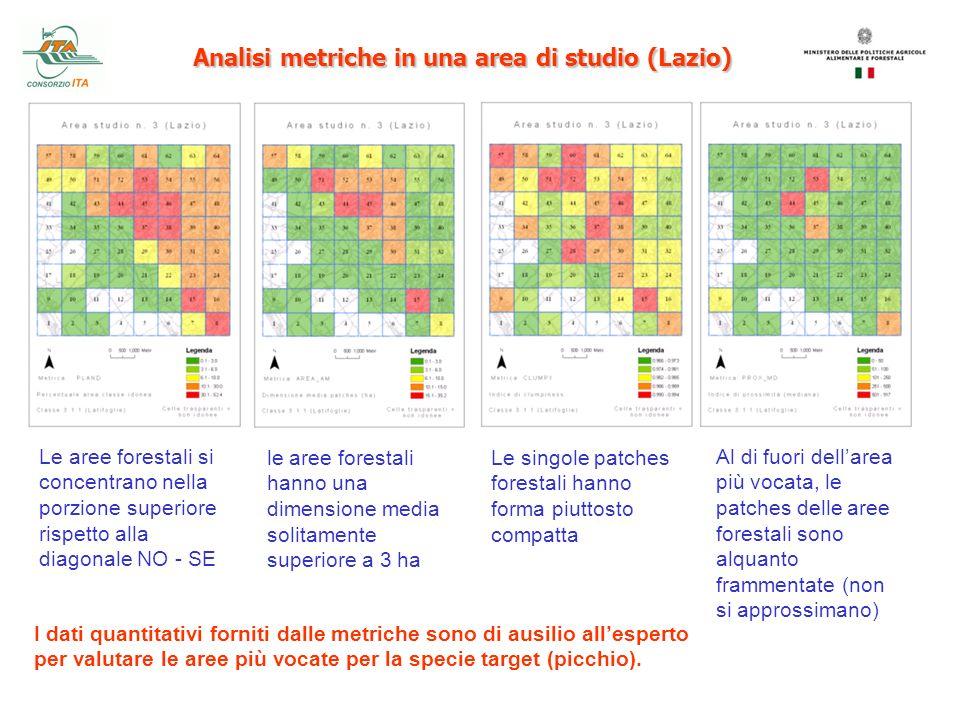 Analisi metriche in una area di studio (Lazio) Le aree forestali si concentrano nella porzione superiore rispetto alla diagonale NO - SE le aree fores