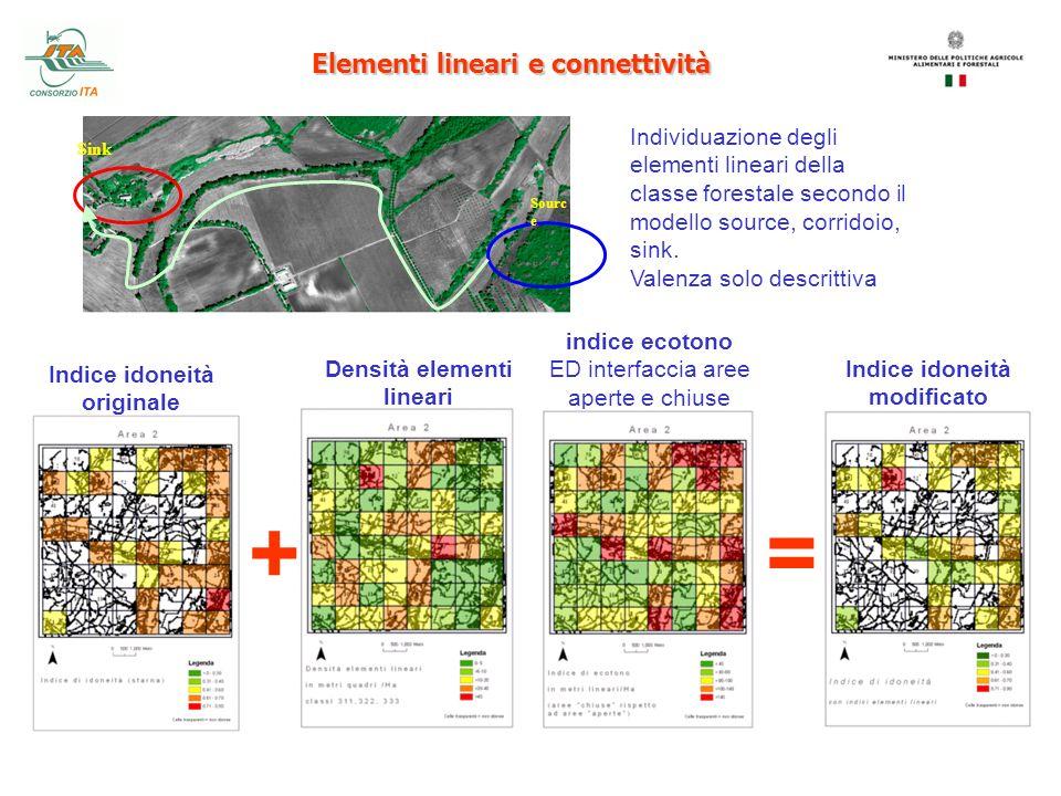 Elementi lineari e connettività Sourc e Sink Individuazione degli elementi lineari della classe forestale secondo il modello source, corridoio, sink.