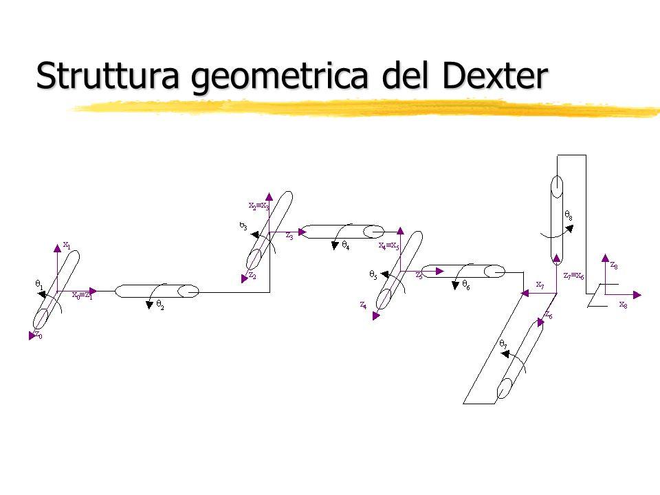 Struttura geometrica del Dexter