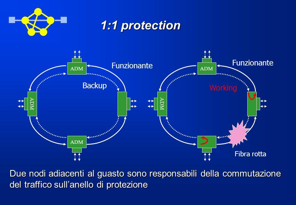 1:1 protection ADM Fibra rotta Funzionante Backup ADM Funzionante Working Due nodi adiacenti al guasto sono responsabili della commutazione del traffi