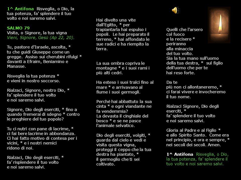 31 OTTOBRE 2013 GIOVEDÌ - II SETTIMANA DEL SALTERIO DEL T.