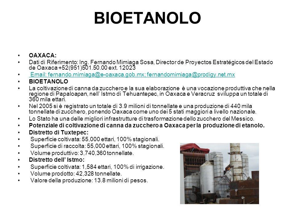 BIOETANOLO OAXACA: Dati di Riferimento: Ing.