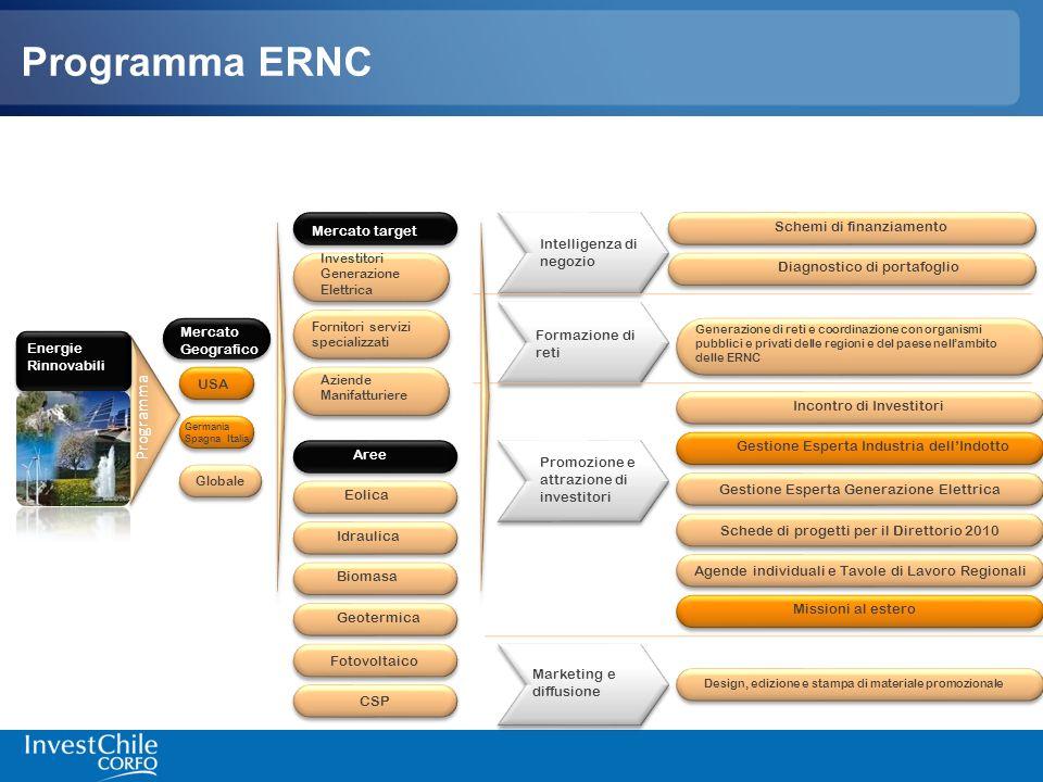 Programma ERNC Promozione e attrazione di investitori Schemi di finanziamento Programma Marketing e diffusione Formazione di reti Intelligenza di nego