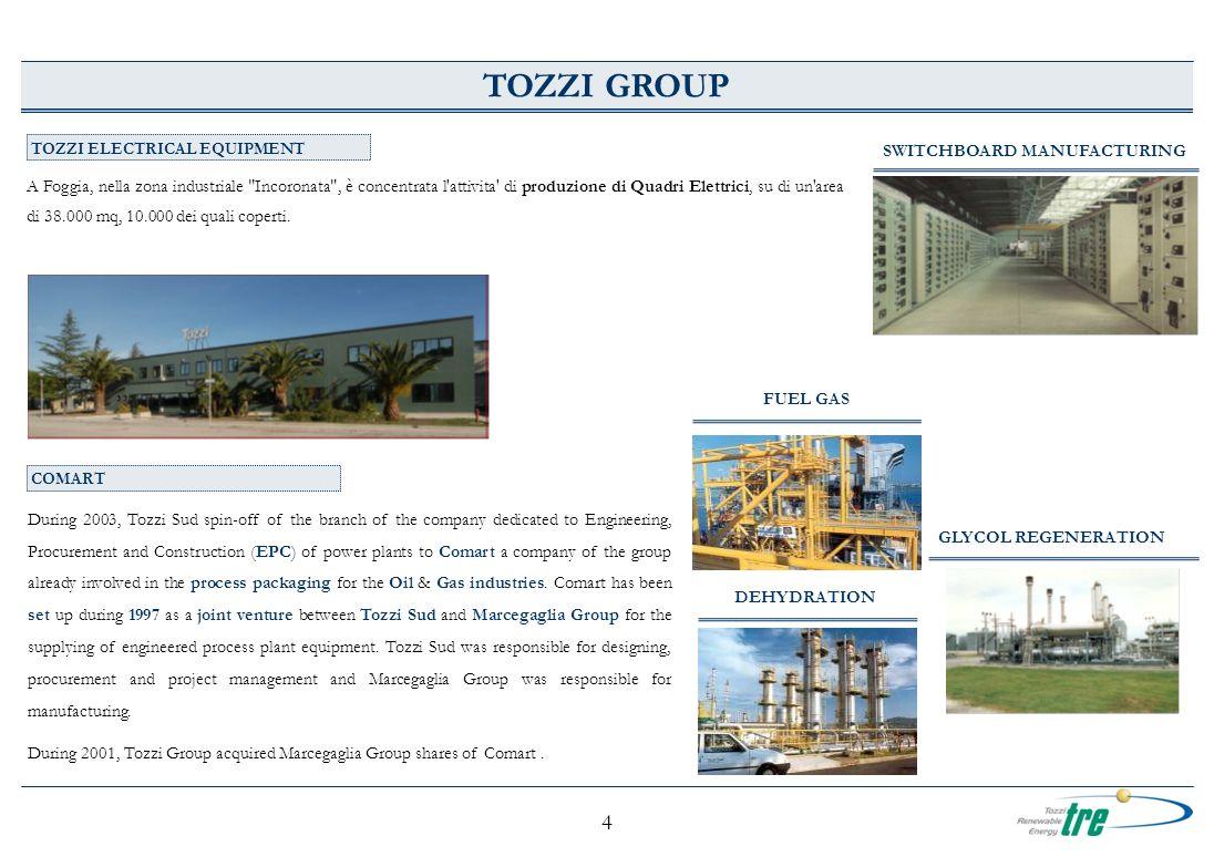 5 TRE TOZZI RENEWABLE ENERGY Le attività nel settore dellenergia rinnovabile del Gruppo Tozzi sono iniziate alla fine degli anni 90 con lo sviluppo e la costruzione della centrale idroelettrica del Mallero (capacità installata pari a 5.10 MW), diventata operativa nel 2001.
